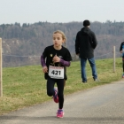Waldlauf-Boesingen_12.03.17.17_-043